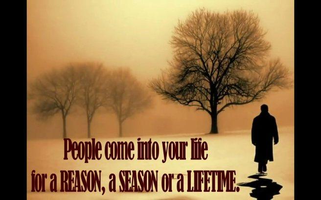 Reason or Season