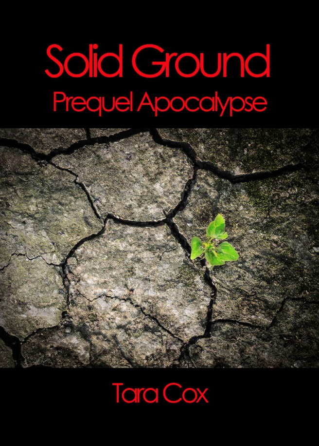 Solid Ground Tara Cox